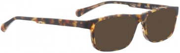 BELLINGER DASH sunglasses in Brown Pattern
