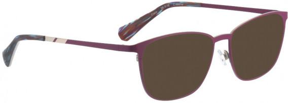 BELLINGER COCO sunglasses in Plum