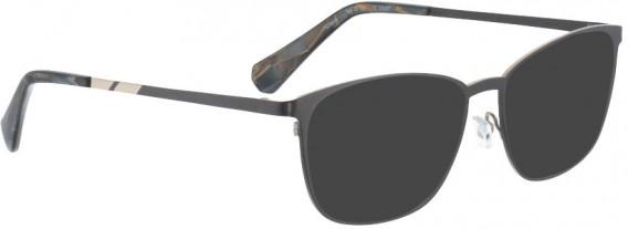 BELLINGER COCO sunglasses in Brown