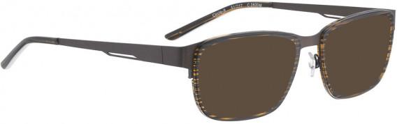 BELLINGER CIRCLE-9 sunglasses in Brown