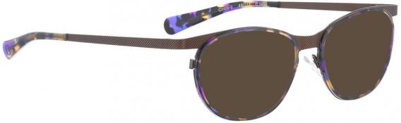 BELLINGER CIRCLE-8 sunglasses in Brown