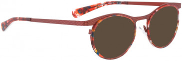 BELLINGER CIRCLE-7 sunglasses in Orange Brown