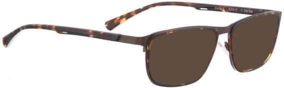 BELLINGER CIRCLE-6 sunglasses in Matt Brown
