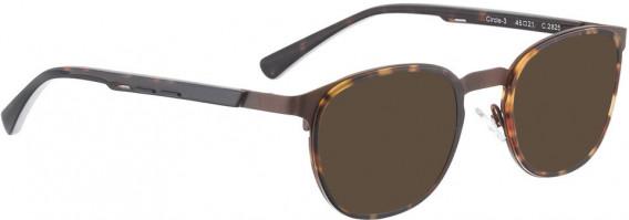 BELLINGER CIRCLE-3 sunglasses in Brown Tortoise