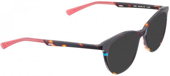 BELLINGER CHILL sunglasses in Brown