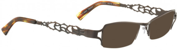 BELLINGER CAMOUFLAGE-2 sunglasses in Shiny Brown