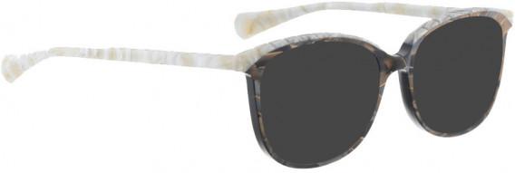 BELLINGER BROWS-5 sunglasses in Dark Brown