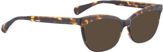 BELLINGER BROWS-2 sunglasses in Brown Pattern