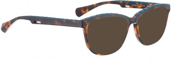 BELLINGER BROWS-1 sunglasses in Brown Pattern