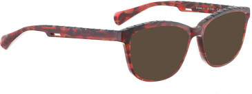 BELLINGER BROWS-1 sunglasses in Black Pattern