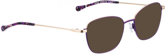 BELLINGER BOLD-5 sunglasses in Aubergine