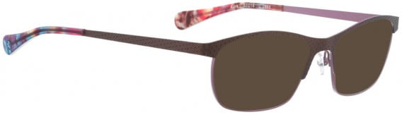 BELLINGER AURA sunglasses in Brown