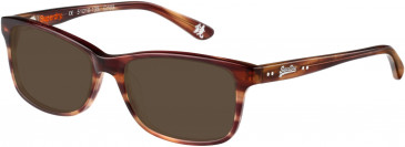 Superdry SDO-15002 Sunglasses in Gloss Brown Horn