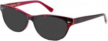 Superdry SDO-ALYSSA Sunglasses in Gloss Tortoise