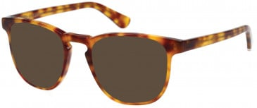 Superdry SDO-CASSIDY Sunglasses in Gloss Blonde Tortoise