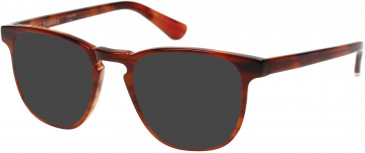 Superdry SDO-CASSIDY Sunglasses in Gloss Rootbeer