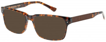 Superdry SDO-HARLEY Sunglasses in Gloss Tortoise