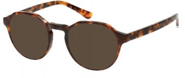 Superdry SDO-JADEN Sunglasses in Gloss Tortoise