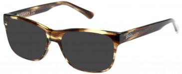 Superdry SDO-USHI Sunglasses in Olive Horn
