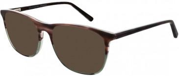 Zenith 86-53 sunglasses in Brown