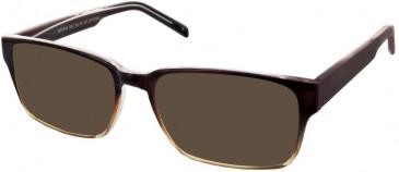 Matrix 832 sunglasses in Brown