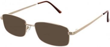 Matrix 216-52 sunglasses in Gold