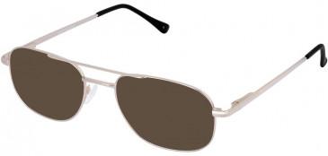Lazer 4048-53 sunglasses in Brown
