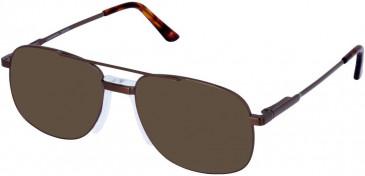 Cameo OLIVER sunglasses in Gunmetal