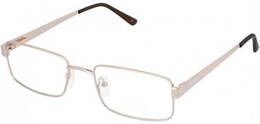 Lazer 4054-57 glasses in Gold