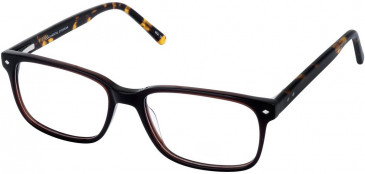 Cameo DEL glasses in Brown