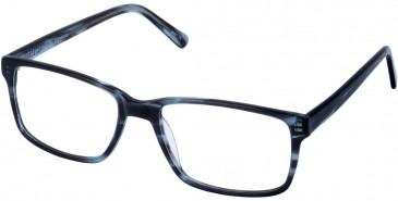 Cameo BRADLEY glasses in Tort