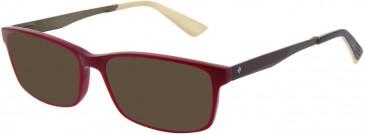 Le Coq Sportif LCS2015A-54 sunglasses in Dark Red