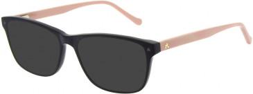 Le Coq Sportif LCS1014A-52 sunglasses in Matte Black