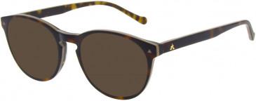 Le Coq Sportif LCS1012A-49 sunglasses in Nude Tortoiseshell