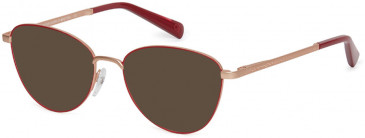 Benetton BEO3004-51 sunglasses in Teal