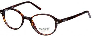 Barbour B012 glasses in Brown Tort