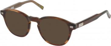 Barbour BI-028-49 sunglasses in Horn