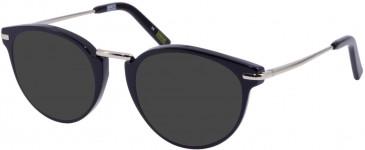 Barbour BI-032 sunglasses in Tort