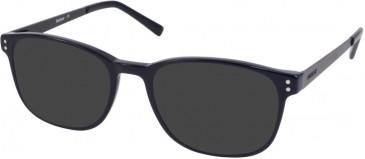 Barbour B067-49 sunglasses in Dark Brown