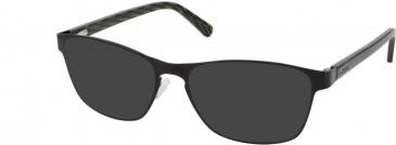 Barbour B065-51 sunglasses in Brown