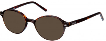 Barbour B012 sunglasses in Brown Tort