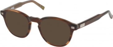 Barbour BI-028-49 sunglasses in Horn