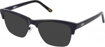 Barbour BI-027-52 sunglasses in Tort