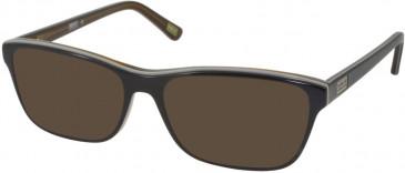 Barbour BI-025-54 sunglasses in Brown