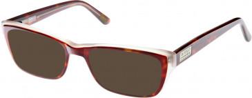 Barbour BI-019-53 sunglasses in Tort