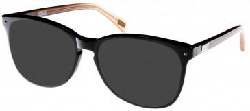Barbour BI-013 sunglasses in Cherry
