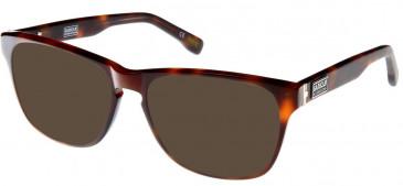 Barbour BI-007-54 sunglasses in Tort