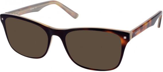 Barbour B066 sunglasses in Tort