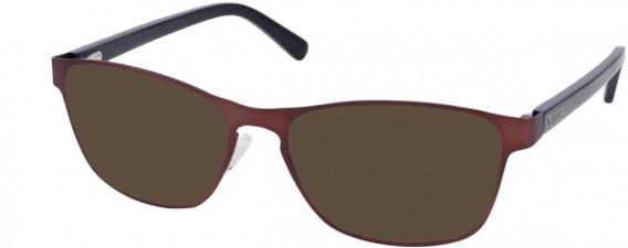 Barbour B065-53 sunglasses in Brown