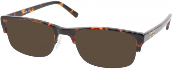 Barbour B059-55 sunglasses in Tort